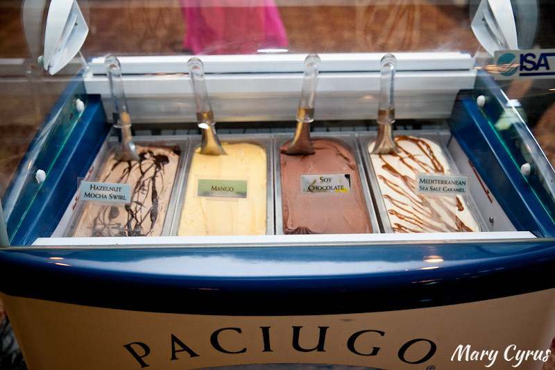 A Paciugo Gelato Bar at a Cinco de Mayo Wedding | Mary Cyrus Photography - Weddings & Portraits in Dallas, Texas & Beyond